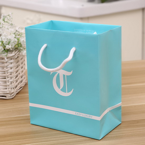 luxury glossy lamination cotton handle paper bag title=